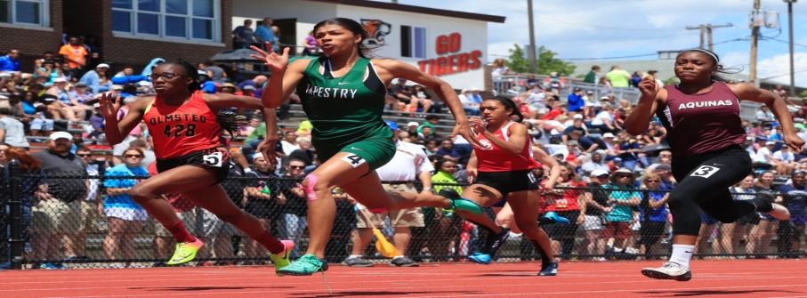 Nia Stevens dominates at Division II state meet